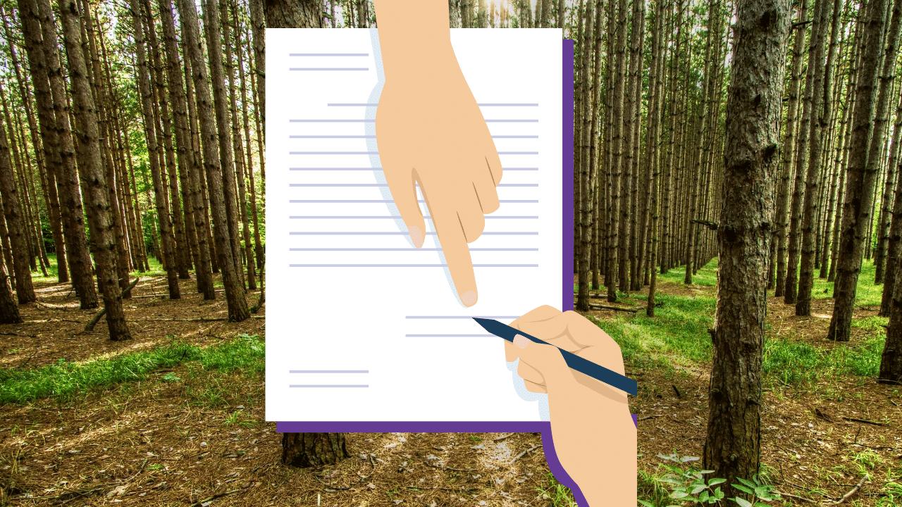 原野の背景に契約書のイラスト
